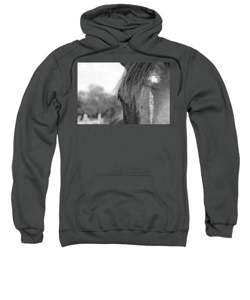 Thoroughbred B/w Sweatshirt