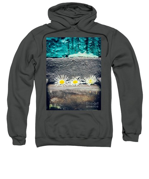 Sweatshirt featuring the photograph Three Daisies Stuck In A Door by Silvia Ganora