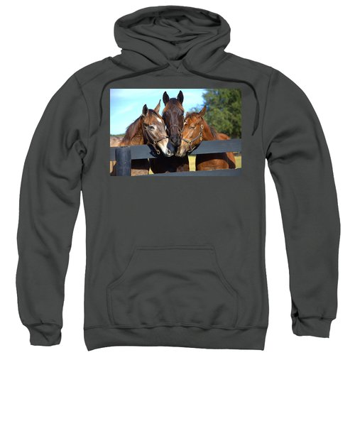Three Friends Sweatshirt