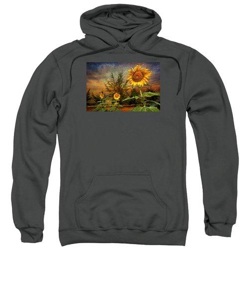 Three Sunflowers Sweatshirt