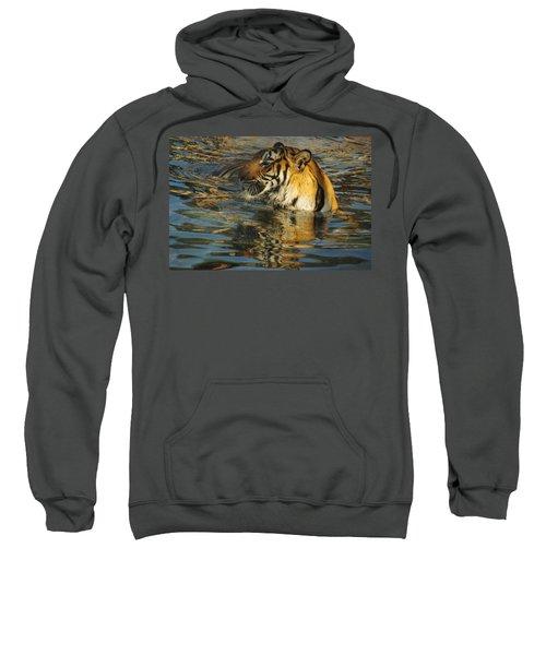 Tiger 3 Sweatshirt
