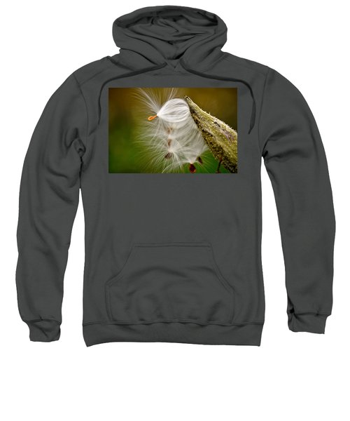 Time For Me To Fly Sweatshirt