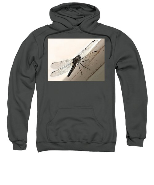 Tiny Magnificence  Sweatshirt