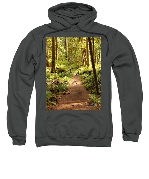 Trail Through The Rainforest Sweatshirt