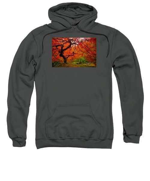 Tree Fire Sweatshirt
