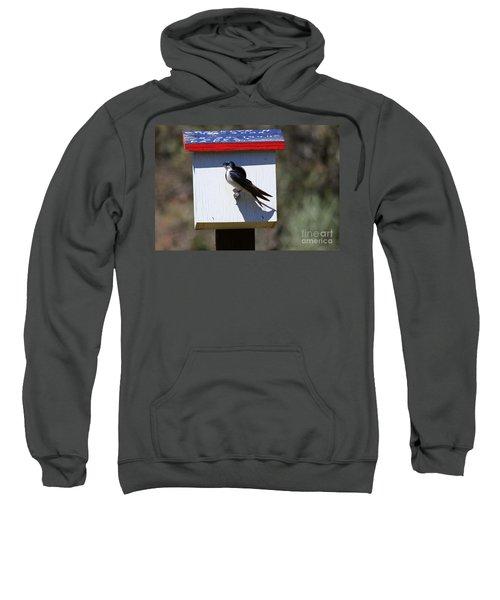 Tree Swallow Home Sweatshirt by Mike  Dawson