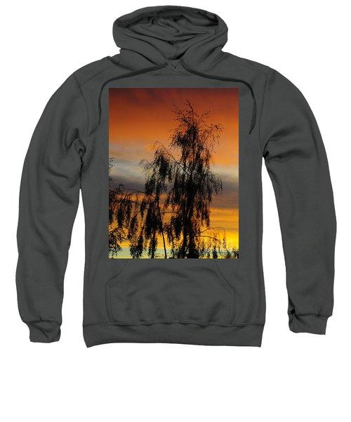 Trees In The Sunset Sweatshirt