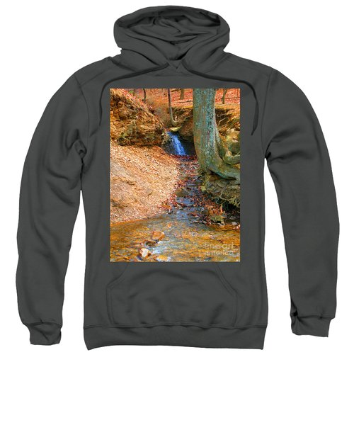 Trickling Waterfall By Shellhammer Sweatshirt