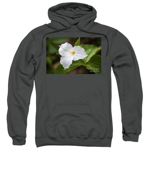 Trillium Sweatshirt