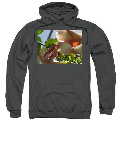 Tropical Beauty Sweatshirt