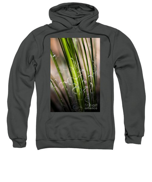 Tropical Grass Sweatshirt
