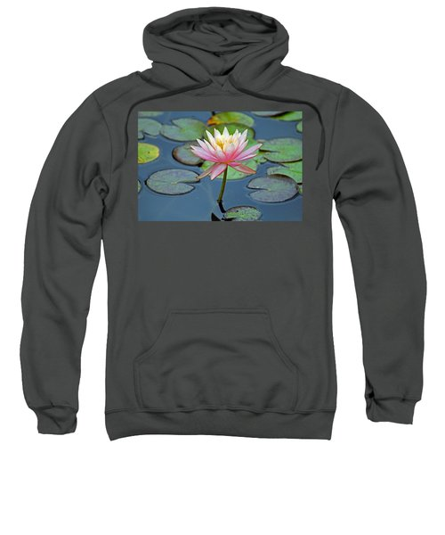 Tropical Pink Lily Sweatshirt