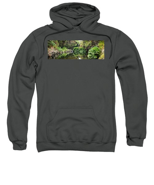 Tropical Reflections Sweatshirt
