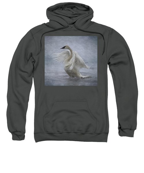 Trumpeter Swan - Misty Display Sweatshirt