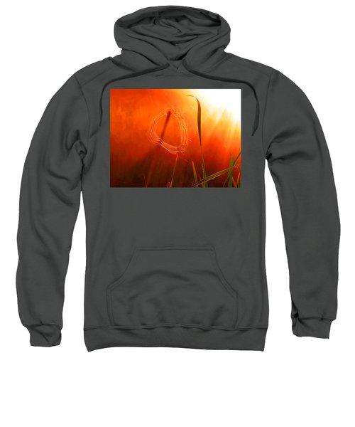 The Spider's Web In Golden Sunlight Sweatshirt