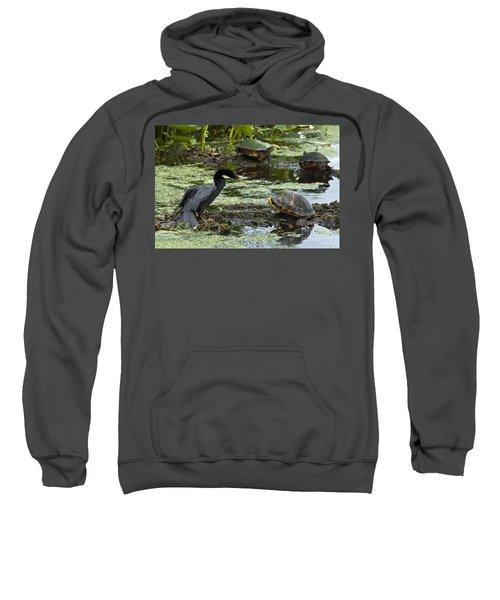Turtles And Anhinga Sweatshirt