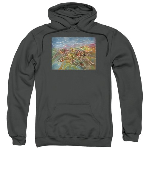 Turtles II Sweatshirt