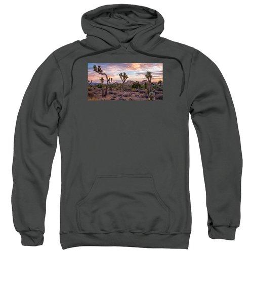 Twilight Comes To Joshua Tree Sweatshirt