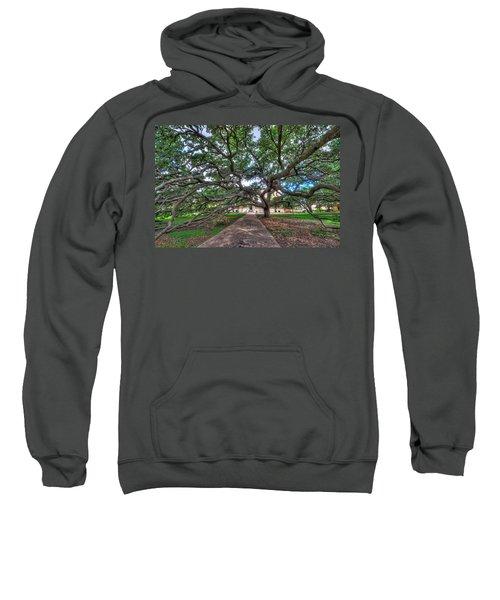 Under The Century Tree Sweatshirt