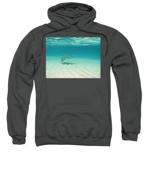 Underwater Flight Sweatshirt by Peggy Hughes