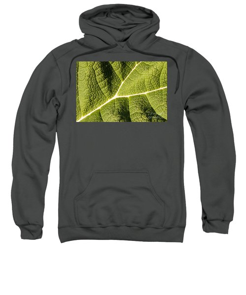 Veins Of A Leaf Sweatshirt