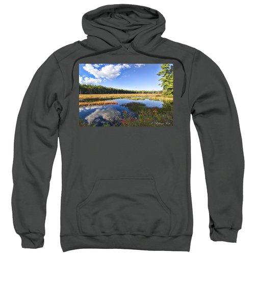 Vibrant Fall Scene Sweatshirt