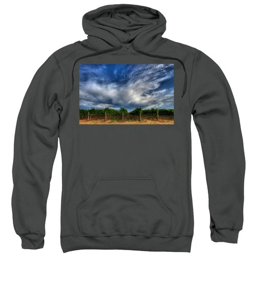 Vineyard Storm Sweatshirt