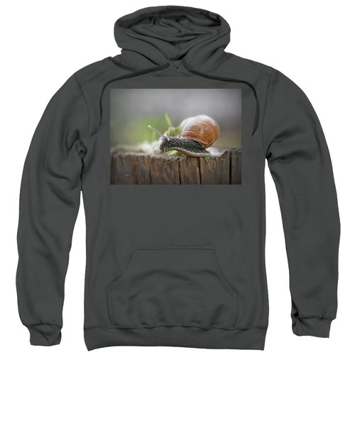 Voyage Of Discovery Sweatshirt