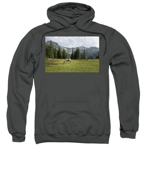 Wallowas - No. 2 Sweatshirt