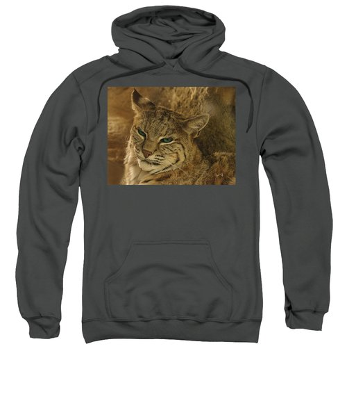 Wary Bobcat Sweatshirt