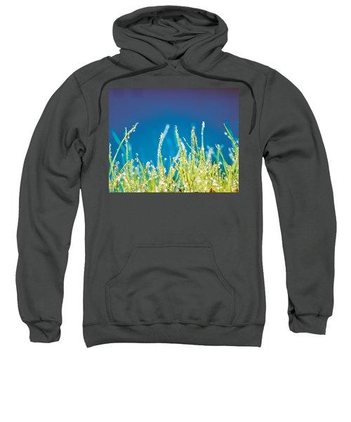 Water Droplets On Blades Of Grass Sweatshirt