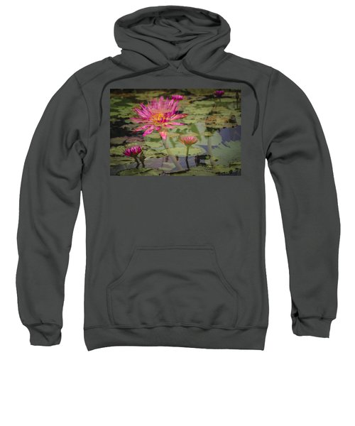 Water Garden Dream Sweatshirt