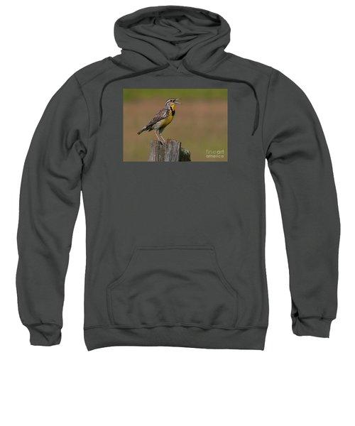 Western Meadowlark.. Sweatshirt by Nina Stavlund