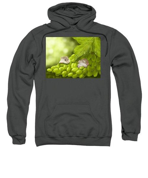 What A Binge... Sweatshirt