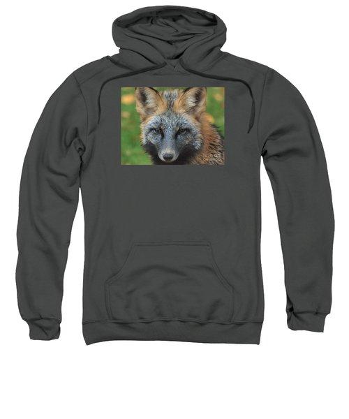 What The Fox Said Sweatshirt