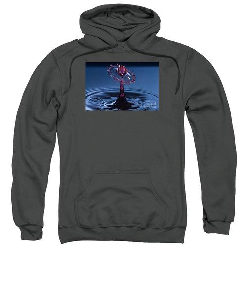 Wheel Of Confusion Sweatshirt