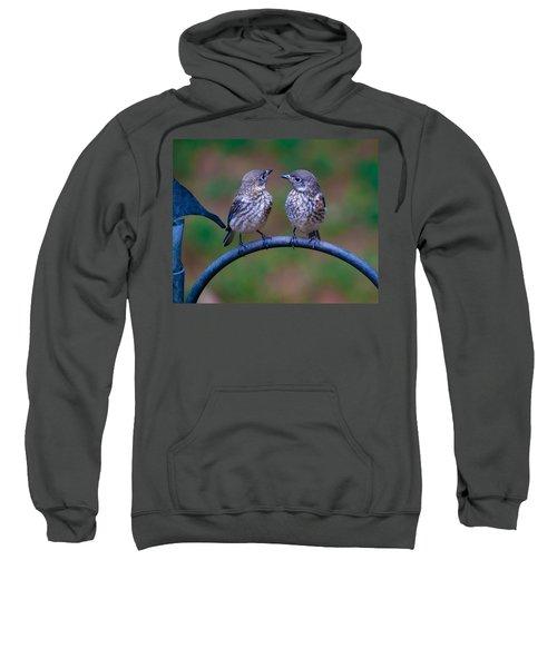When's Dad Coming Back? Sweatshirt