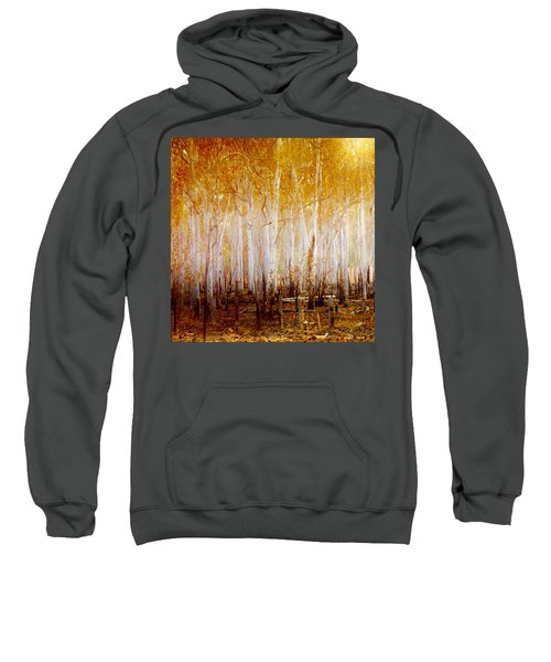 Where The Sun Shines Sweatshirt