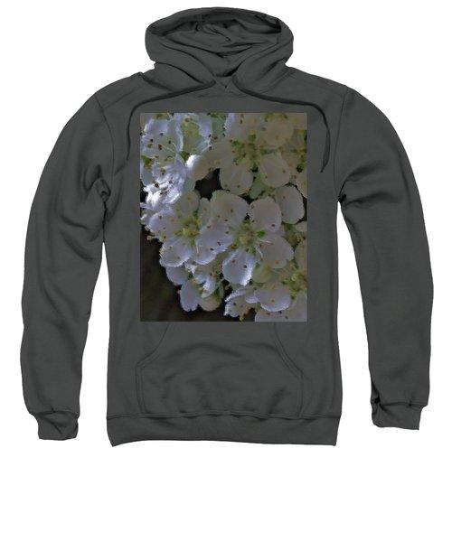 White Blooms Sweatshirt