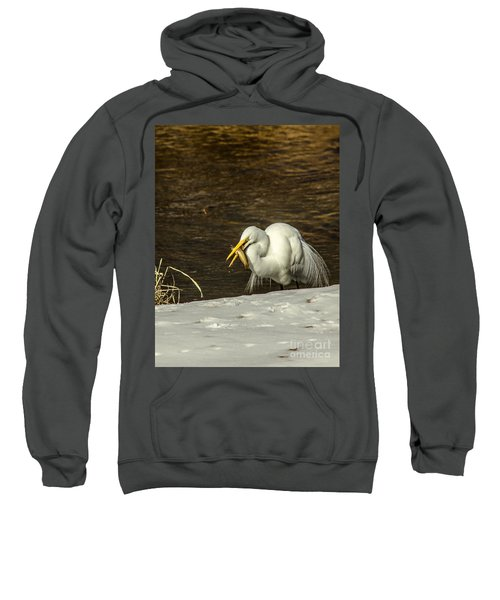 White Egret Snowy Bank Sweatshirt by Robert Frederick