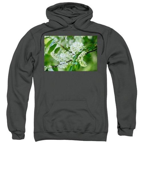 White Lilac Sweatshirt