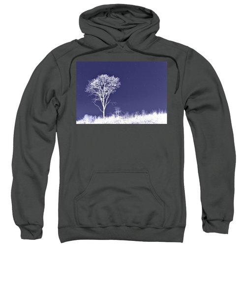 White Tree - Blue Sky - Silver Stars Sweatshirt