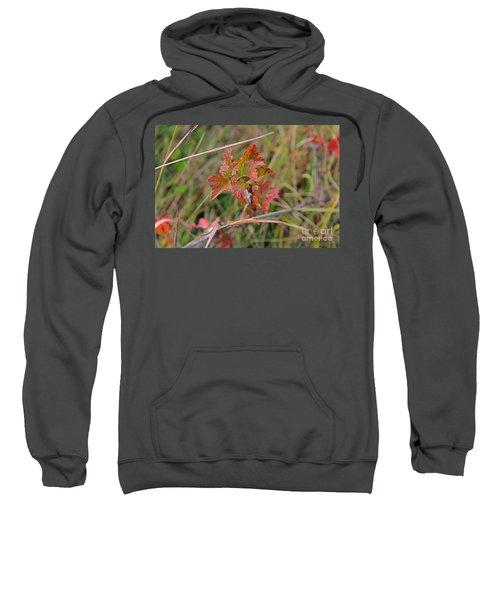 Wild Gooseberry Leaves Sweatshirt