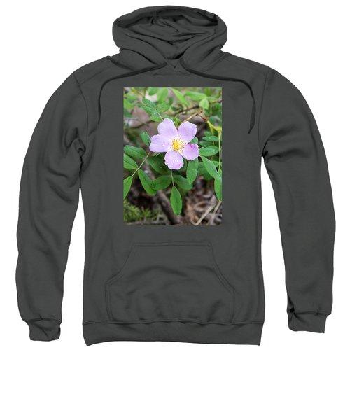 Wild Gentian Sweatshirt