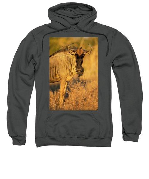 Wildebeest At Dawn, Chobe National Sweatshirt