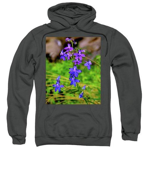 Wildflower Larkspur Sweatshirt