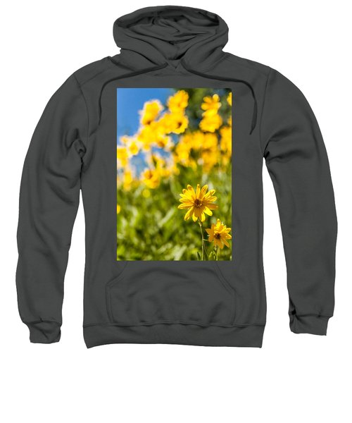 Wildflowers Standing Out Abstract Sweatshirt