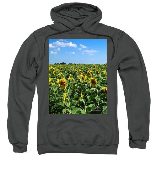 Windblown Sunflowers Sweatshirt