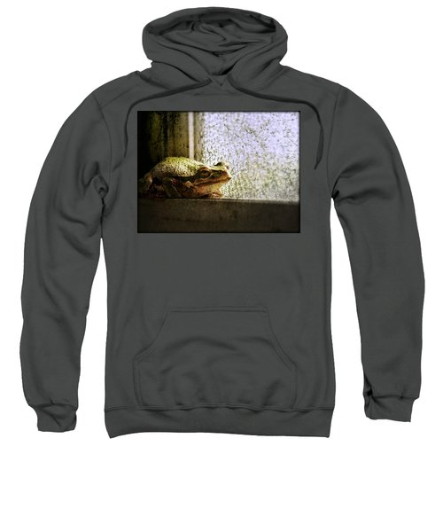 Windowsill Visitor Sweatshirt