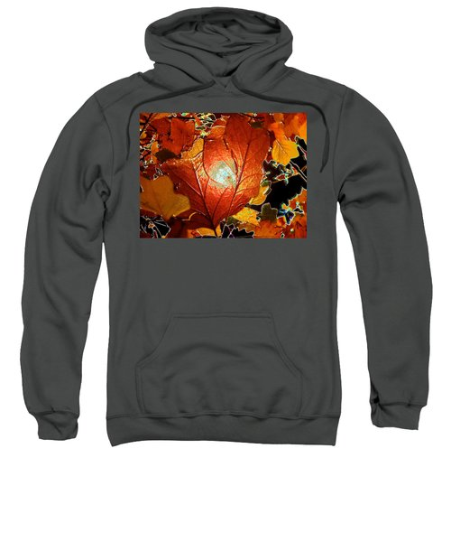 winters autumn in Pasadena Sweatshirt